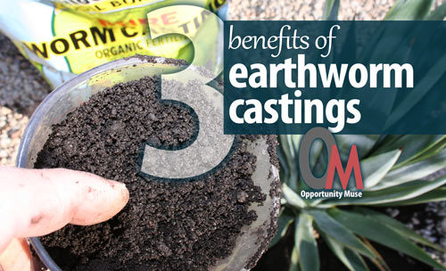 benefits of earthworm castings