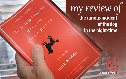 The Curious Incident of the Dog in the Night-time review