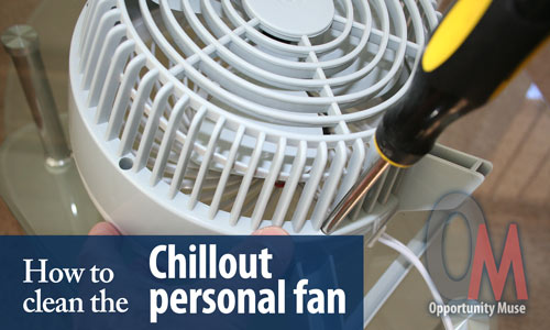 how to clean the chillout fan